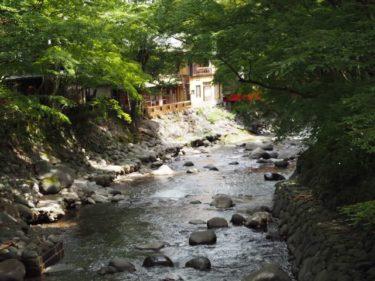 沼津-修善寺へ旅行してきた(修善寺編)【自粛疲れ解消】